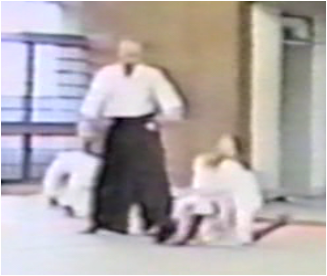 合気道京都白林会 Aikido Kyoto Byakurinkai